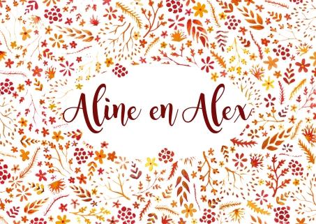 aline-en-alex-trouw