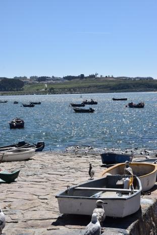 Porto_2017 (57)