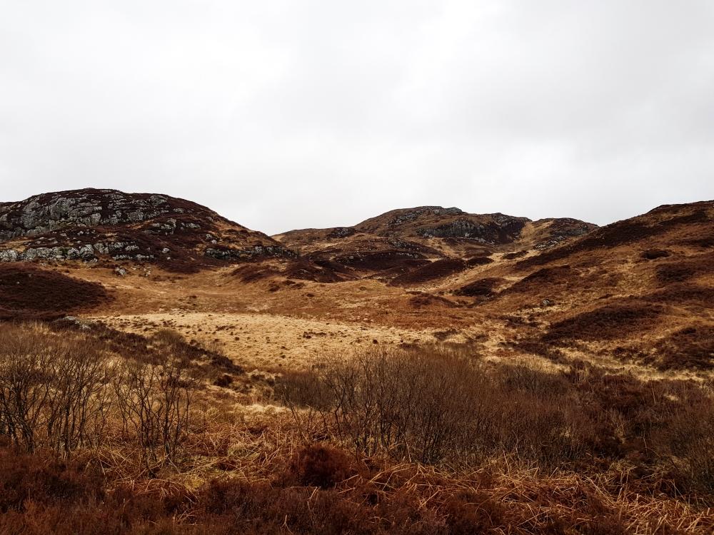 Schotland (141 van 180)