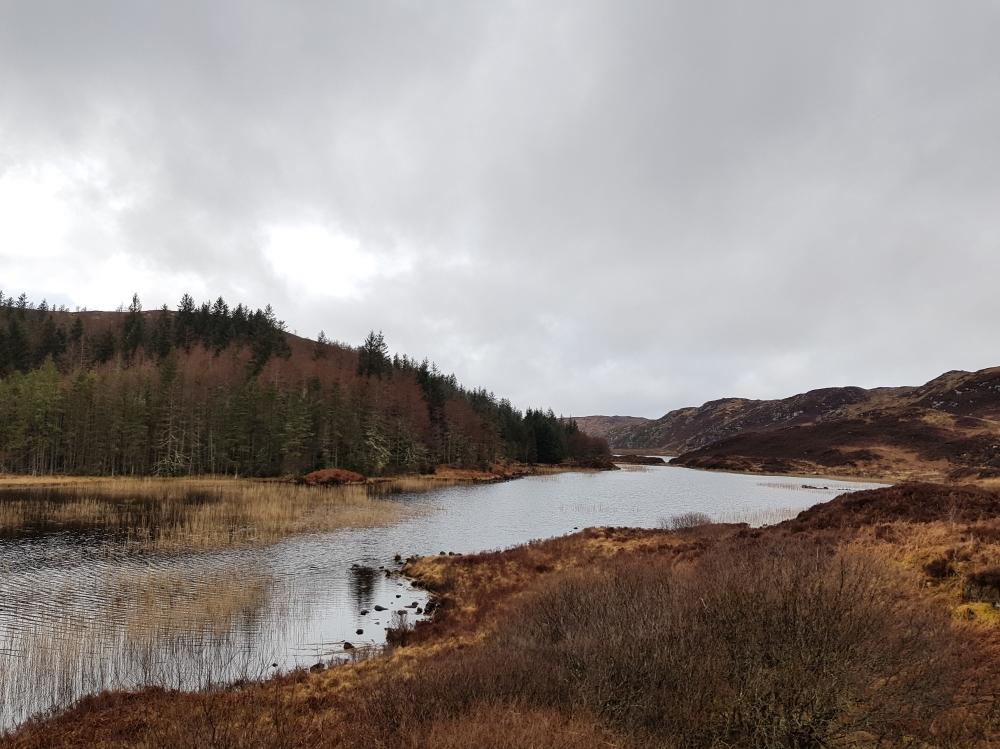 Schotland (142 van 180)