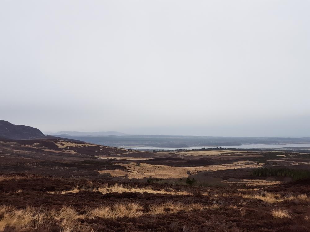 Schotland (82 van 180)